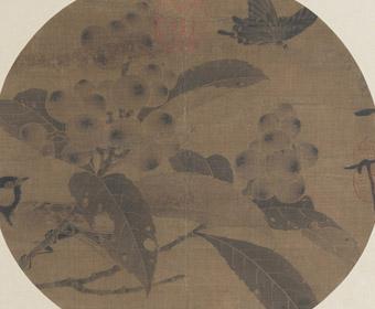 宋 赵佶 枇杷山鸟图 纨扇页 故宫博物馆藏