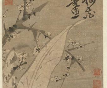 明 徐渭 梅花蕉叶图轴 故宫博物院藏