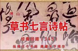 (345)清 傅山 草书七言诗帖 山西省博物院藏