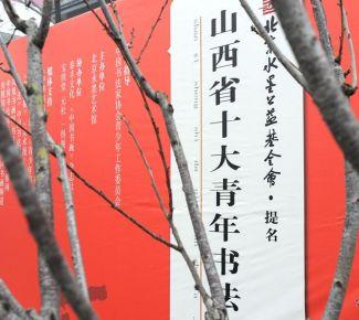 """北京水墨公益基金会提名""""山西省十大青年书法家"""""""