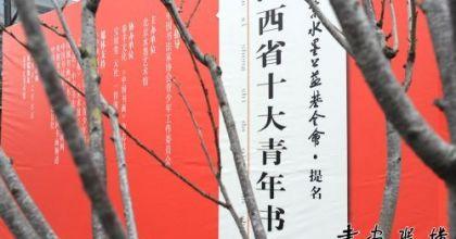 """北京水墨公益基金会提名""""山西省十大青年书法家""""作品展在京开幕"""