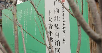 """""""广西壮族自治区十大青年书法家""""提名展在京开幕"""