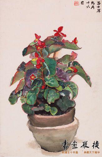 戴泽 《一盆花》 设色纸本 1957年作