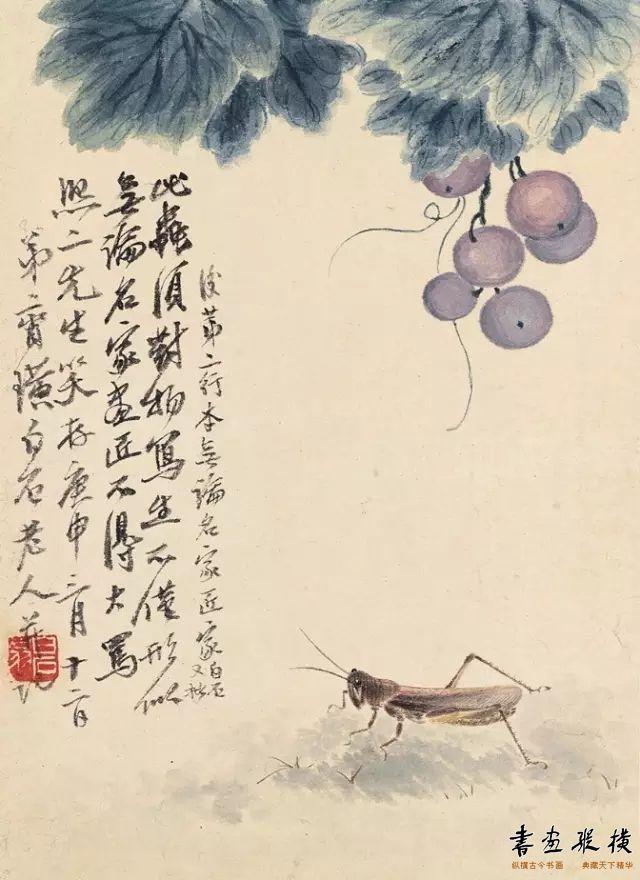 葡萄飞蝗(草虫册十二开之六)齐白石 25.3cm×18.4cm
