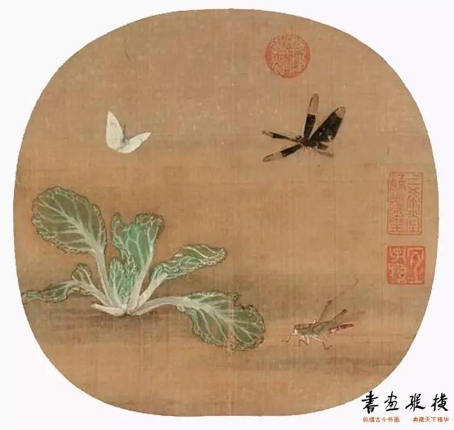 """野蔬草虫 (宋)许迪 册页绢本设色 25.8cm×26.9cm 12世纪中期 台北""""故宫博物院""""藏"""