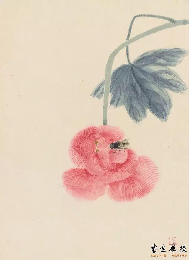 芙蓉蜜蜂(草虫册十二开之四)齐白石 册页 纸本设色 25.3cm×18.4cm 中国美术馆藏