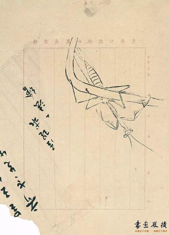螳螂稿 齐白石 纸本墨笔 30cm×23cm 北京画院藏