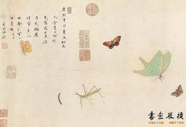 草虫卷(局部) (清)朱汝琳 纸本设色 1711年  台北故宫博物院藏