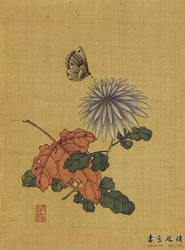 《秋菊蝴蝶》