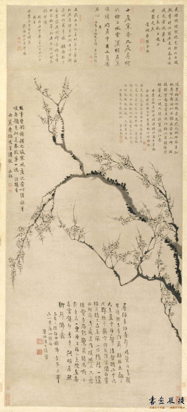 清 汪士慎 梅花图 纵142.7厘米 横75.5厘米 克利夫兰美术馆藏