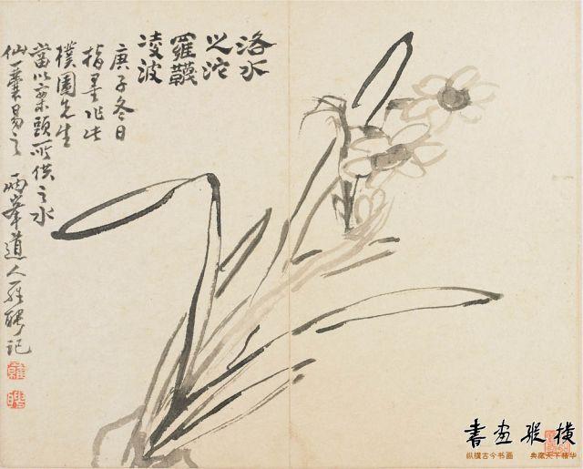 清 罗聘 水仙册页 纸本 墨笔 纵28厘米 横67.9厘米 弗里尔艺术馆藏